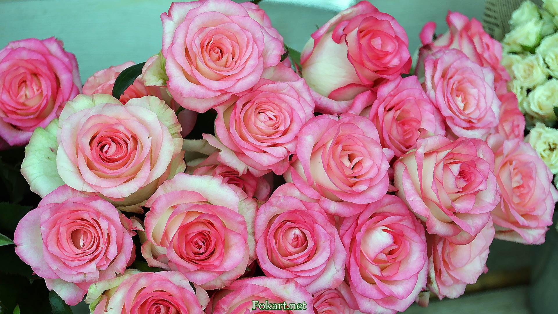 Букет бело-розовых роз
