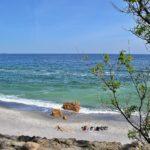 На весеннем пляже в конце апреля