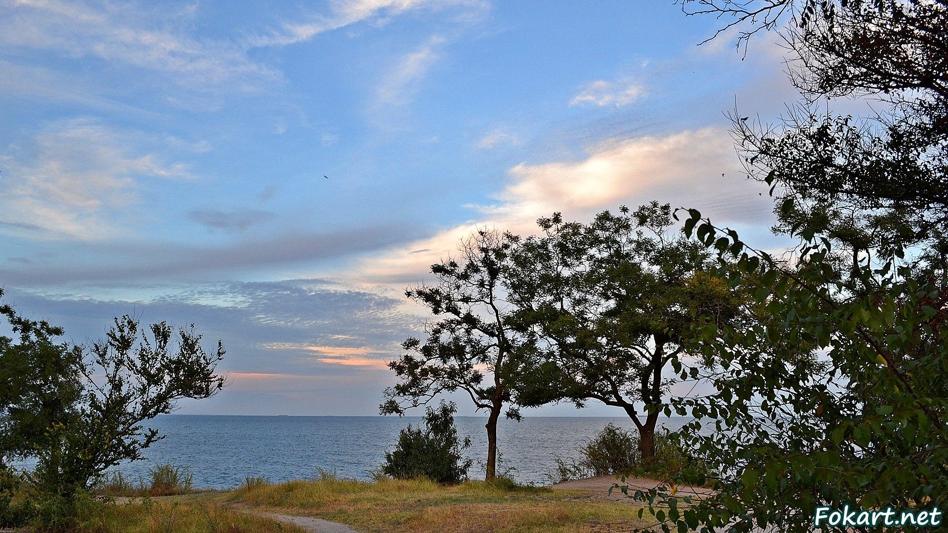 Деревья, пожелтевшая трава, живописное небо и морской горизонт