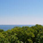 Морской горизонт и зелёные кроны деревьев у моря в мае