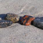 Четыре морских разноцветных камешка на мокром песке