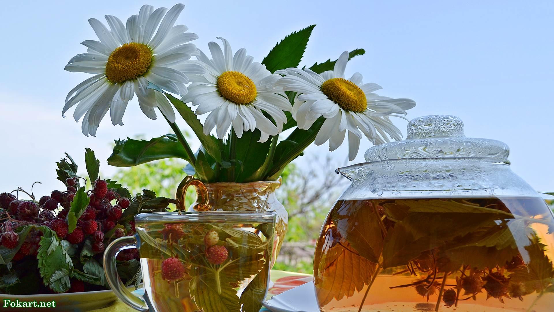 Чай из листьев и ягод земляники в прозрачном чайнике