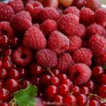 Ягоды красной смородины и малины