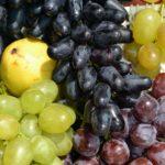 Виноград трёх сортов, светлый и тёмный