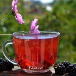 Чай с добавлением свежих плодов ежевики. Чашка чая, плоды ежевики и на фоне - цветы космеи.