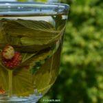 Чай из листьев и ягод земляники