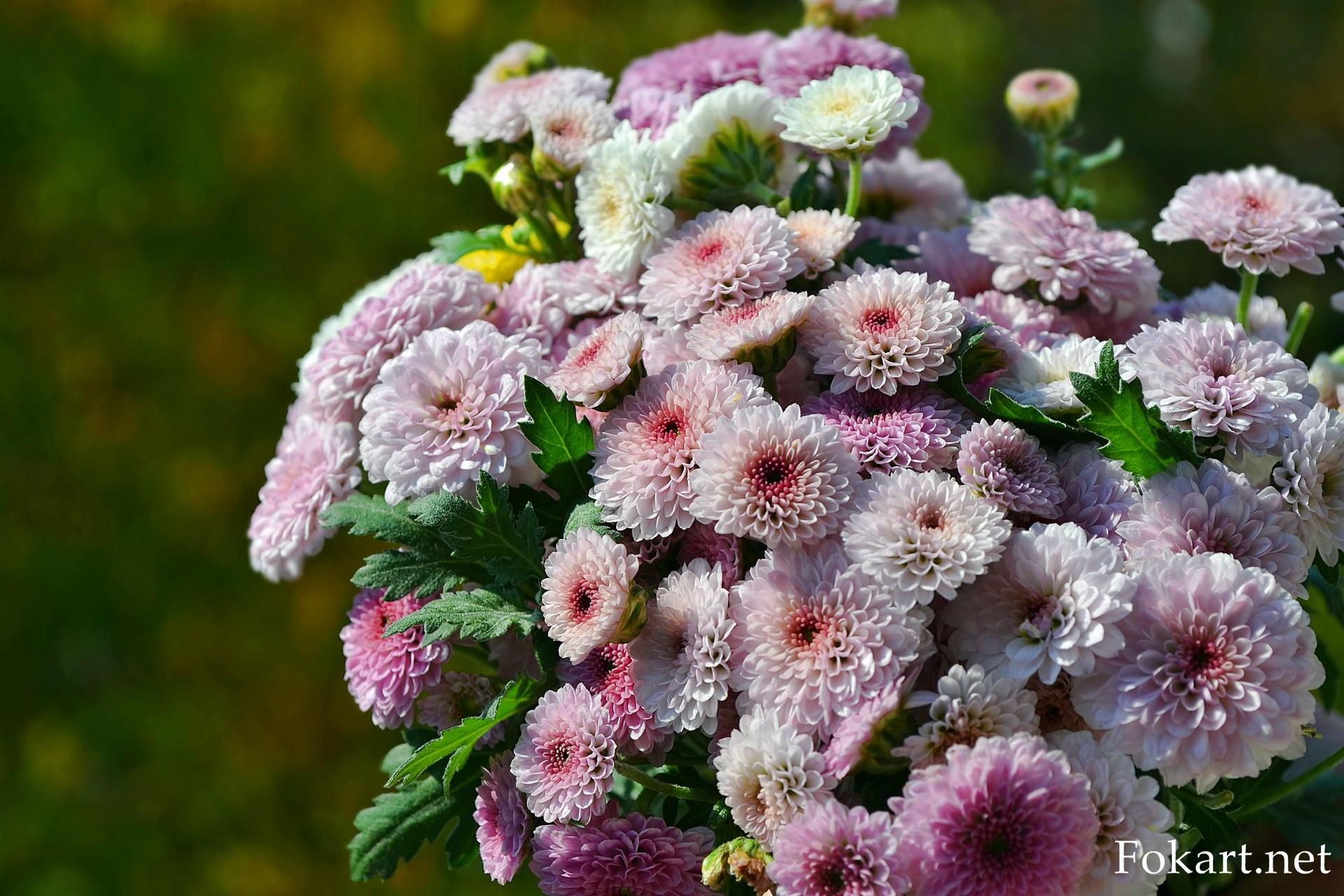 Милый букетик с очень мелкими розоватыми хризантемами