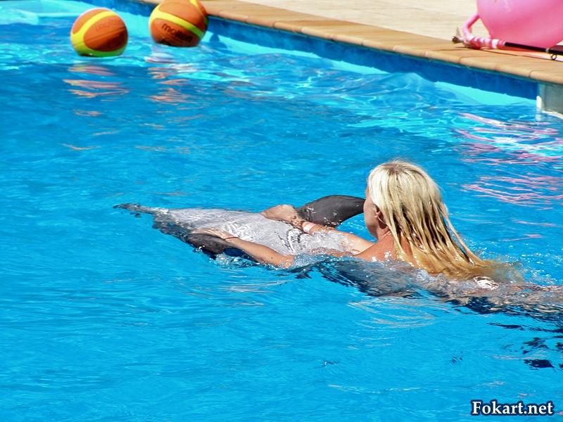 Дельфин плывет на спине и катает девушку