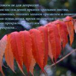 Осень не для депрессий, картинка со словами