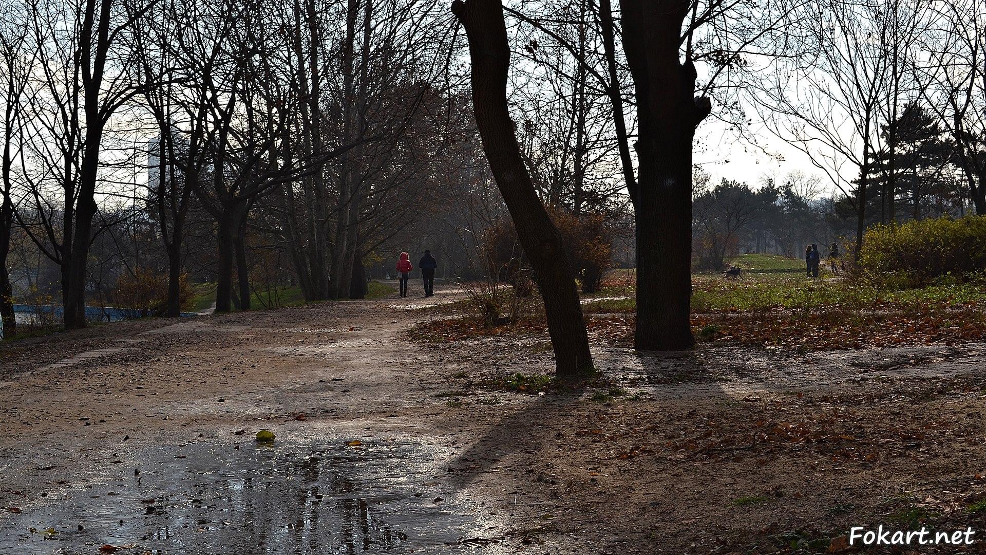 В парке поздней осенью в конце ноября