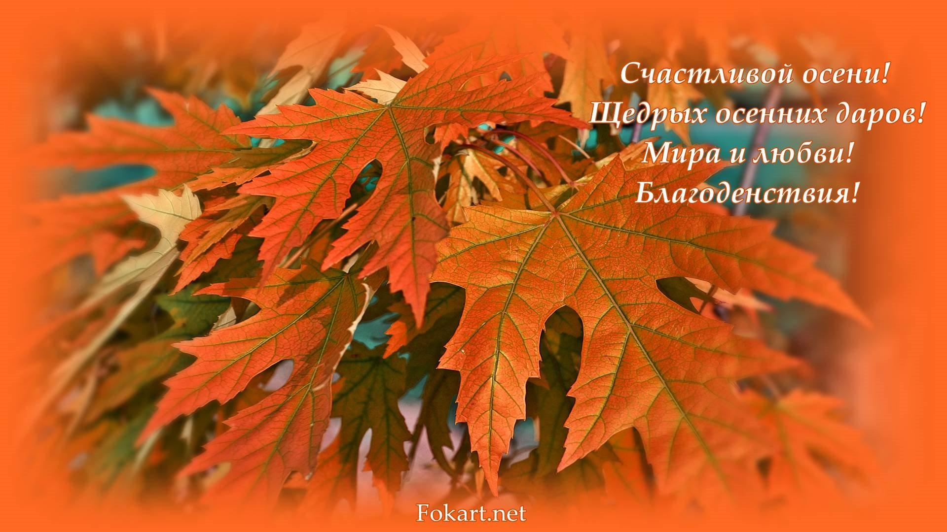 Осенние фото-обои с пожеланиями