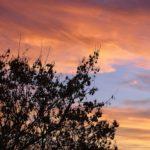 """Оранжевые краски неба. """"Огненный"""" закат"""