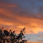 Оранжевые тучи в вечернем свете заката. Необыкновенное небо