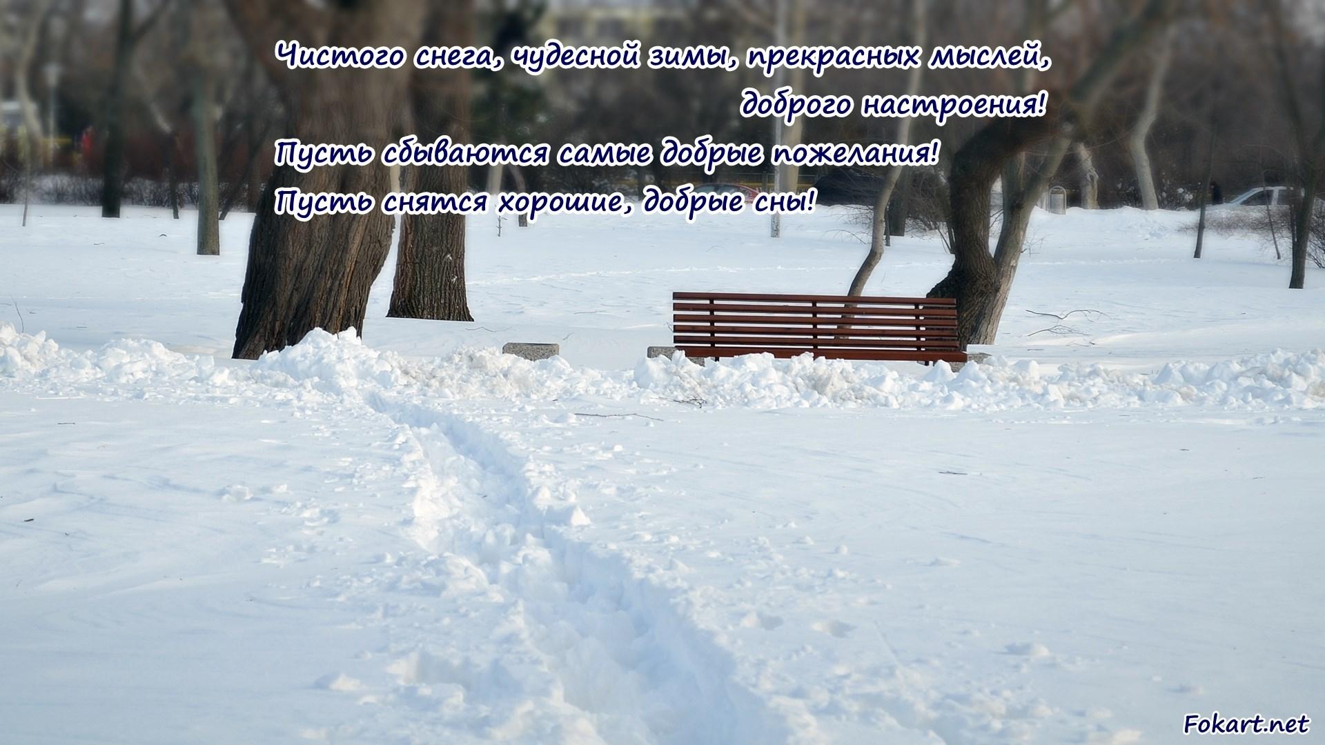 Чистый белый снег в парке. Картинка на экран с пожеланиями