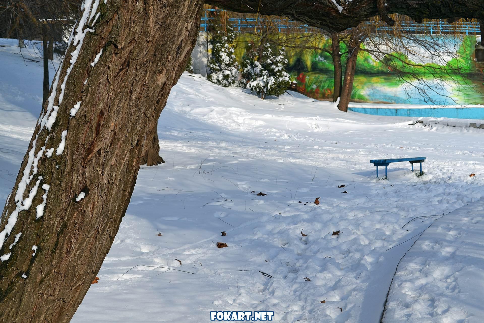 Снег и следы в зимнем парке