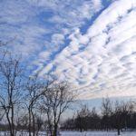 Необычное зимнее небо над деревьями