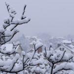 Сильный снегопад над посёлком и заснеженные деревья. Вид с высоты