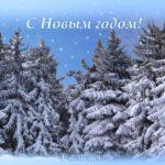 Ёлочки в снегу, новогодняя открытка