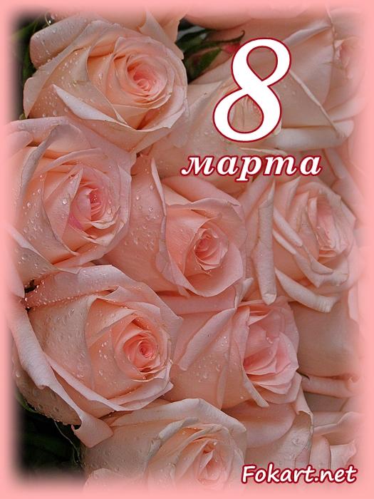 Букет нежных светлых роз в капельках воды, открытка 8 марта