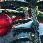 Красный шарик на ёлке