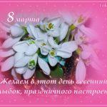 Букетик подснежников в ярко-розовом обрамлении - открытка, фото-обои с 8 марта