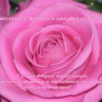 Открытка бабушке с 8 марта, роза