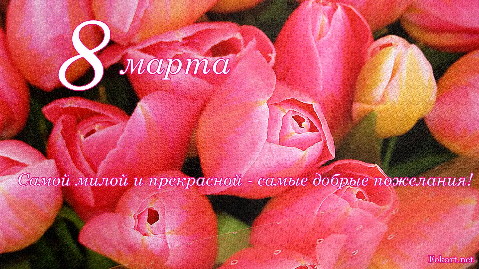 Весенняя открытка с тёмно-розовыми тюльпанами