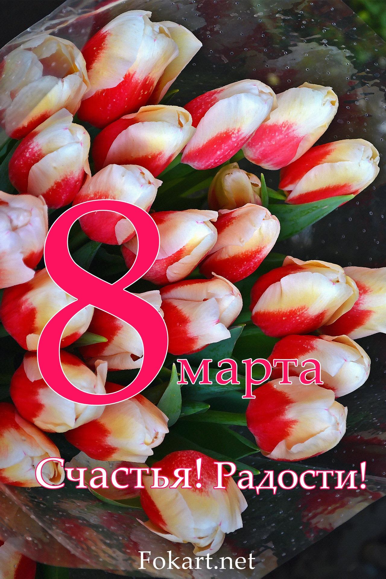 Букет ярких тюльпанов, открытка 8 марта