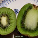 Две половинки плодов киви — поперечный и продольный срез
