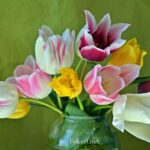 Букет разноцветных тюльпанов в банке на зелёном фоне
